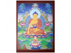 Dharma Poster Shakyamuni Buddha
