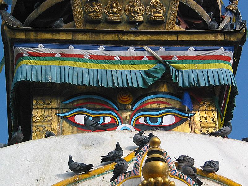 Shambu - Tibetischer Deckenbehang 500 cm